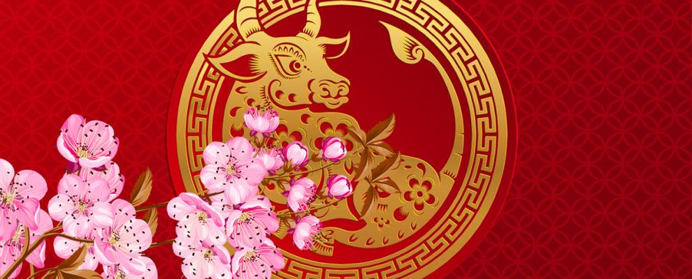 Nội dung Hội chợ Xuân Tân Sửu